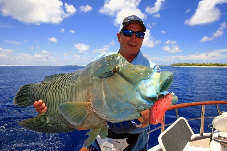 1810 best saltwater fishing images on pinterest for Best saltwater fishing times