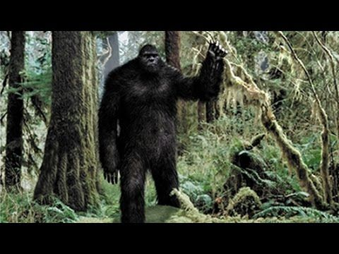 National Geographic Documentary - The Latest Bigfoot Evidence - Documentary 2015 - YouTube