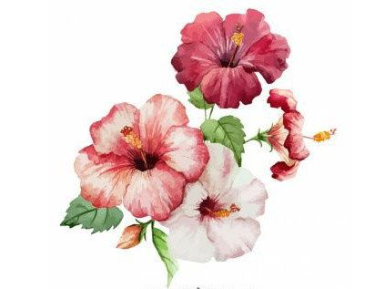 Watercolor HIBISCUS - Temporary Tattoo - choose your size - Red  WHITE-