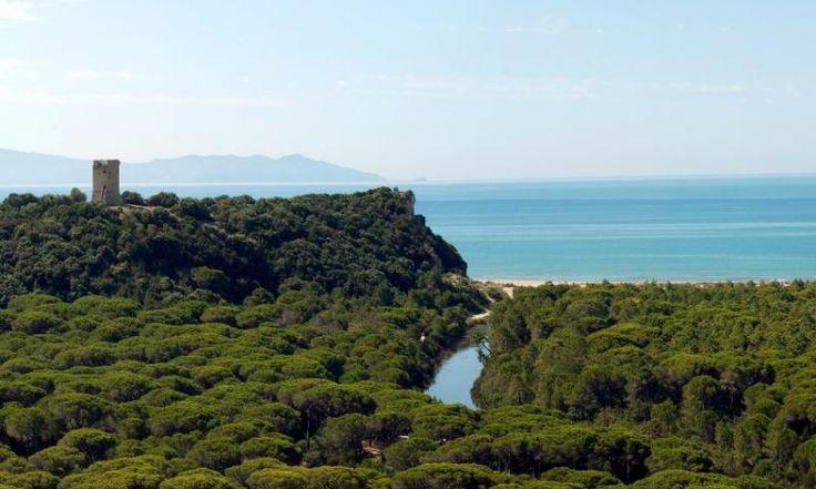 ... hier im Naturschutzgebiet des 1975 eingerichteten Parco Regionale della Maremma kann man die ganze Schönheit der wie unberührt wirkenden Landschaft ungestört genießen. Eine weitere Besonderheit der Maremma ist ...