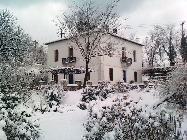 Tsagarada - Villa Christina