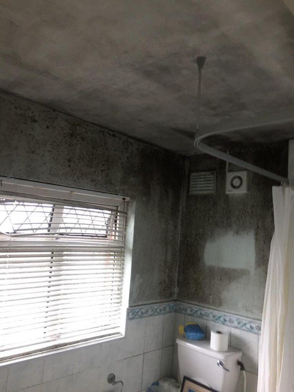 "Mold Inspection at North Miami Beach  We provide a simple, no-nonsense approach to #fixing #mold #problems that we like to call ""Miami Mold Specialists."" Call Us Now 8305-763-8070 Guaranteed LOWER price than the competitor! http://www.miamimoldspecialists.com/ http://www.miamimoldspecialist.com/"