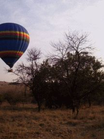 Hot-Air Ballooning SA - Gauteng. Experience 1 200 degrees of adventure and romance. Fly from Gauteng's finest ballooning venues. The Cradle Private Game Reserve, home to more than 40 species of game, and Toadbury Hall with Five-Star accommodation packages.