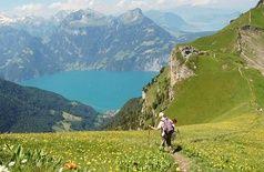 Wanderwege - Morschach-Stoos (de) - Wandern & Spazieren - Sommer - Wanderwege - Wandern & Spazieren - Sommer