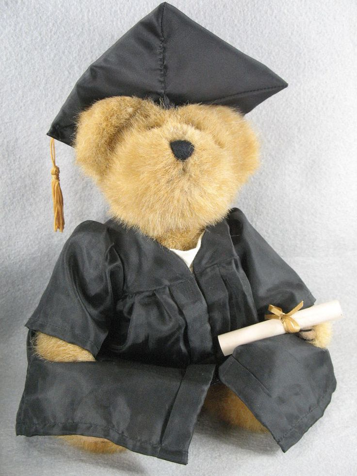 Flights of Fancy - Decorated Graduation Teddy Bear with Diploma (HDFF-T112) #AllOccasion