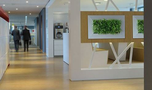 Create green corridors - use Living Art in busy walkways and corridors - see more at http://officelandscapes.co.uk/blog/live-picture-living-plant-art-for-birmingham-restaurant/