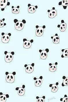 Wallpaper Background Panda pandák pandas