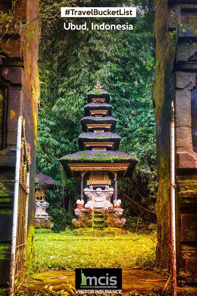 Explore the city of Ubud in Indonesia and lose yourself