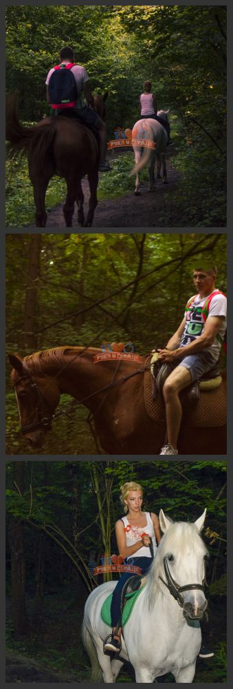 Романтическая прогулка на лошадях по лесу/ Horseriding date #rukaiserdce #рукаисердце #свидание #предложение #date #proposal #engagement #surprise #romantic #gift #romantic