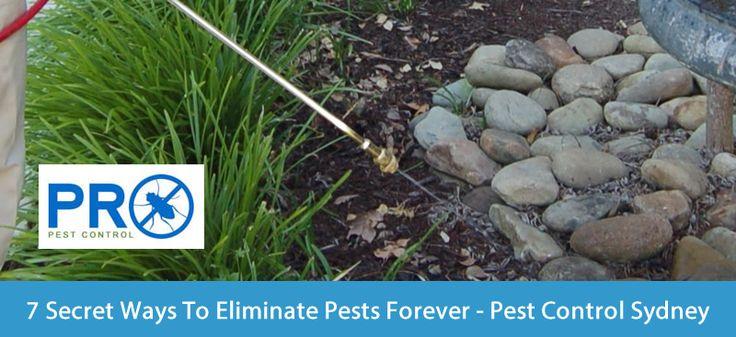 http://issuu.com/propestcontrolsydney/docs/7_secret_ways_to_eliminate_pests_fo