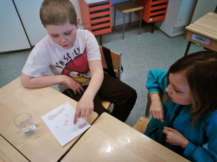 3. luokan fykeä: miksi linnut eivät kastu? Höyhenenpuhaltelua - vesikokeita - lukekaa itse lisää Hakalan koulun 3N:n blogista!