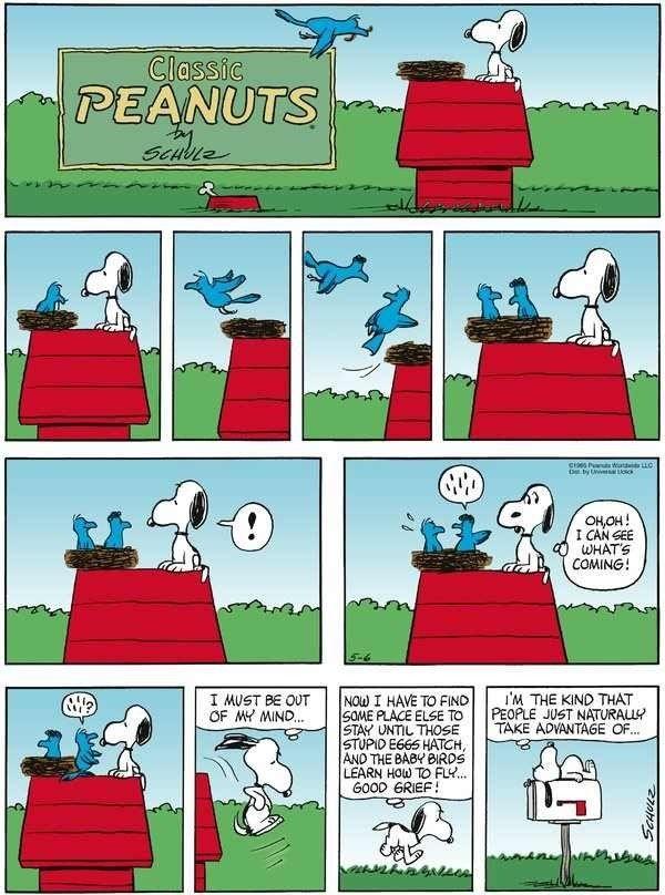 ♥️ Snoopy