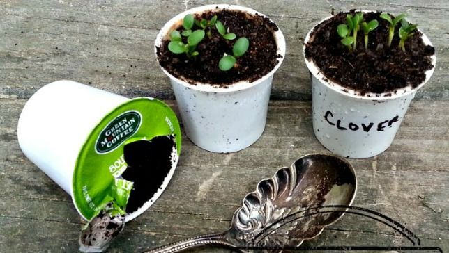 Thank you Mother Nature Network for featuring my K-Cup recycling idea on your site!  Guilty about using K-Cups, check out these creative ideas to #repurpose them once you've had your coffee!