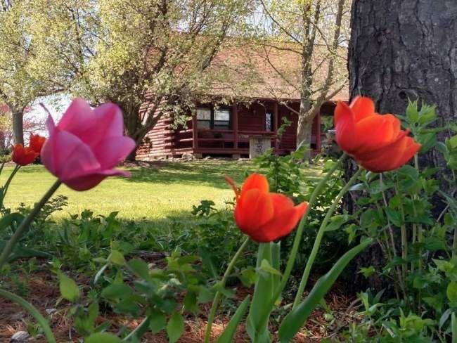 Farm Setting Near Many Family Friendly...   VRBO | Shelbyville Vacation |  Pinterest | Farming, Vacation And Lakes