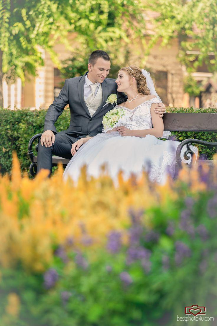 Viki & Dani wedding photo