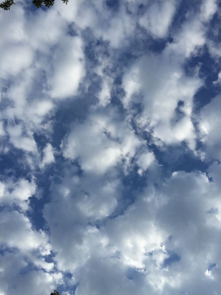 little fluffy clouds (which is a name of a track by the orb, i recommend to give it a try)