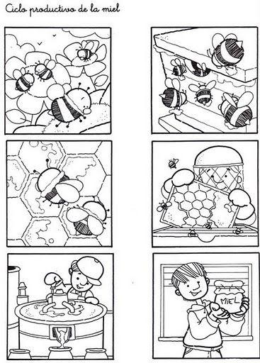 Images à classer-miel