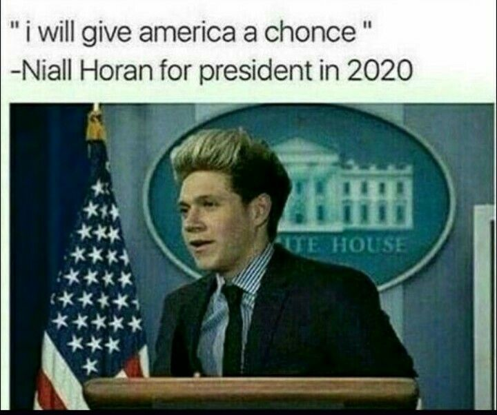 Niall Horan One Direction Humor One Direction Memes I Love One Direction