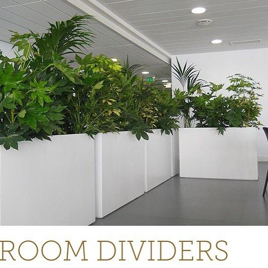 office planter boxes. 66 best professional office ideas images on pinterest architecture home and designs planter boxes