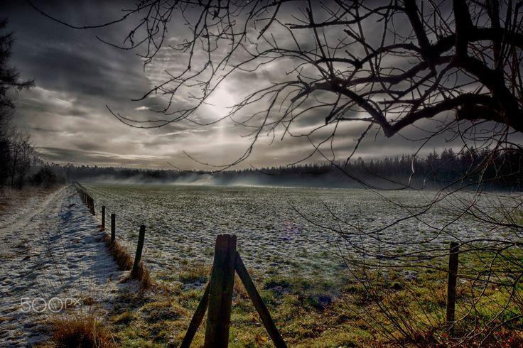 Leersumse Veld #02, Leersum, The Netherlands - Het Leersumse Veld is een natuurgebied in het zuidoosten van de Nederlandse provincie Utrecht.