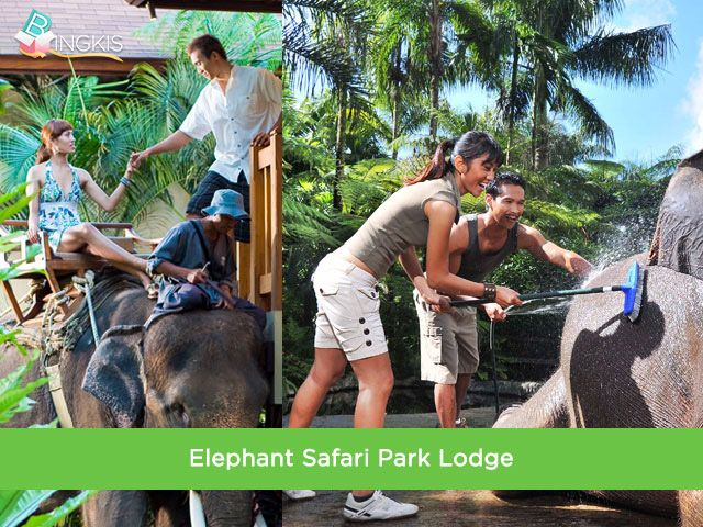 34% OFF! Combination of one night stay at Elephant Safari Park Lodge and one night stay at Ubud Adventure and Function Centre