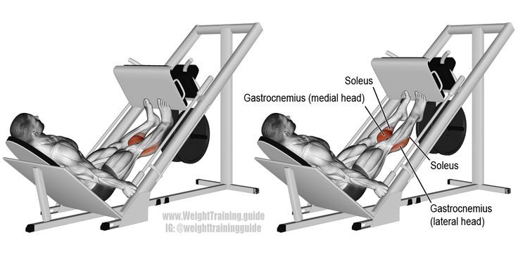 Sled calf press. An isolation push exercise. Main muscles worked: Gastrocnemius and Soleus (both of which make up your calf). Also known as the leg press calf press.