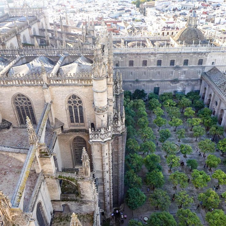 #sevilla #seville #andalusia #andalucia #catedral #catedraldesevilla #orange #orangetrees