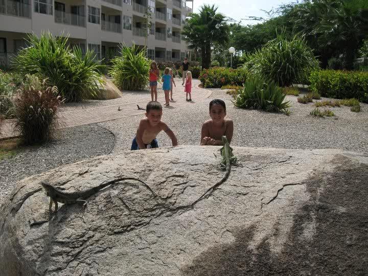 Aruba again
