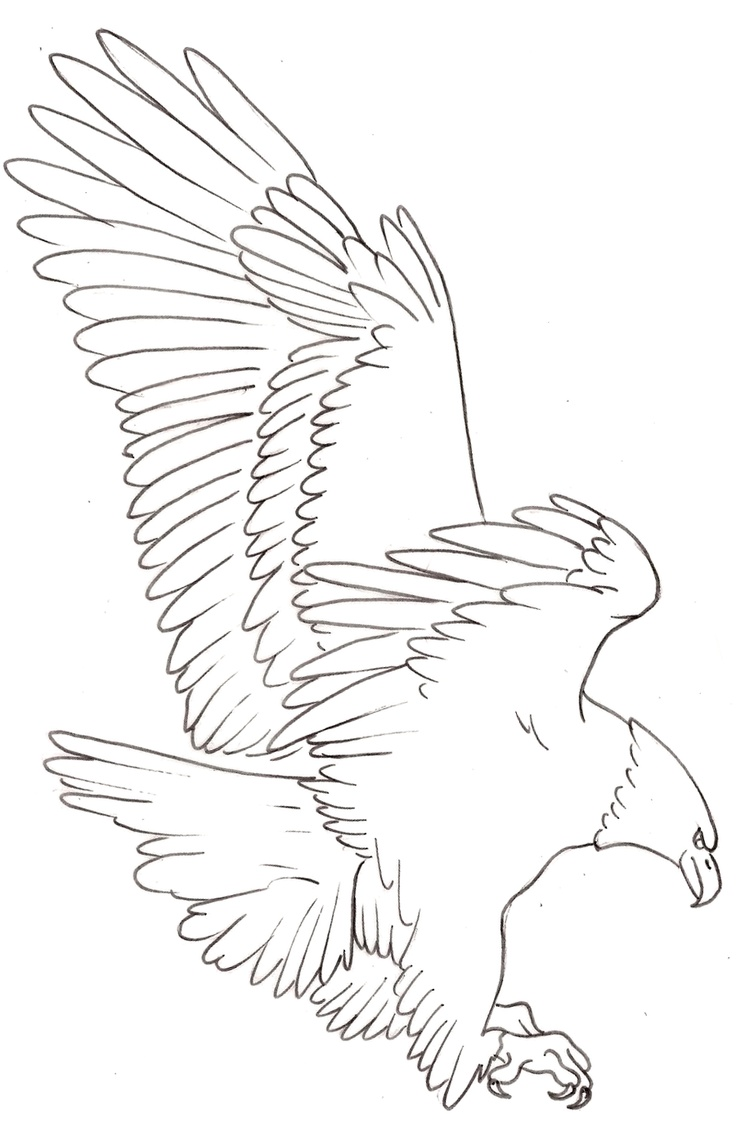 Eagle Tattoo1 by ~Metacharis on deviantART