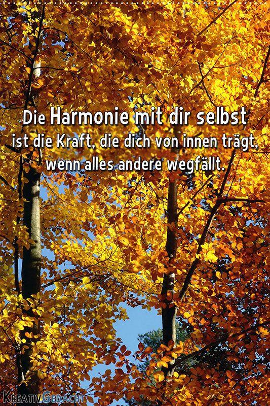 Die Harmonie mit dir selbst, ist die Kraft, die dich von innen trägt, wenn alles andere wegfällt.