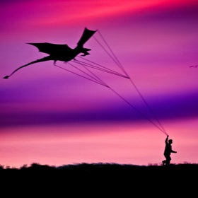 It's just a dragon kite. By mojaa neddo on 500px