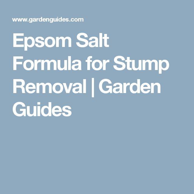Best 25 stump removal ideas on pinterest removing tree for Epsom salt in french