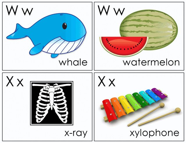 Printable flash cards: Flash cards E to F