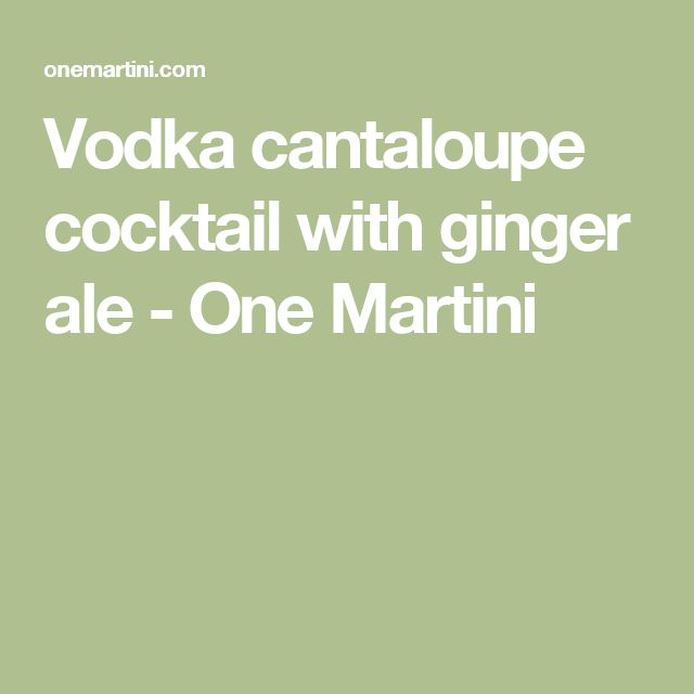 Vodka cantaloupe cocktail with ginger ale - One Martini