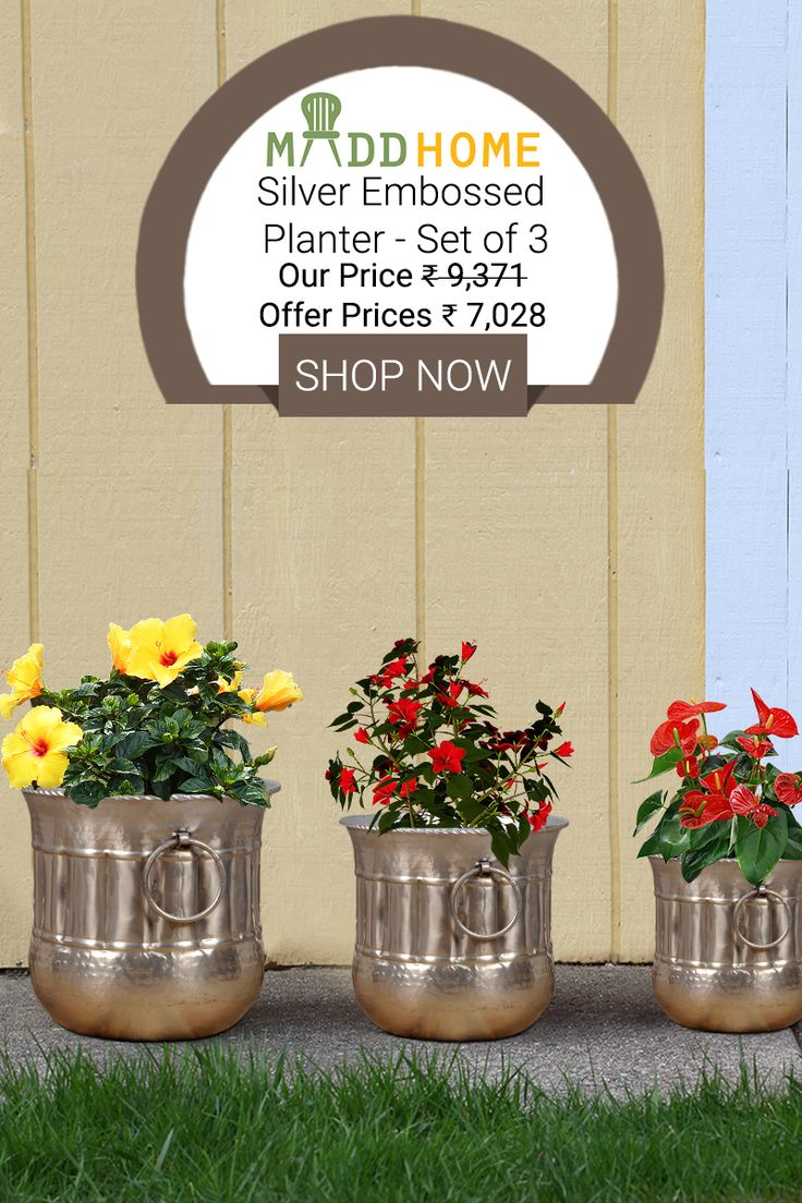 Brighten up your space with these lovely silver embossed accessories. These shining nickel planters made of iron look elegant and give a traditional feel to your decor.