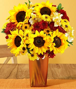 proflowers sunflowers