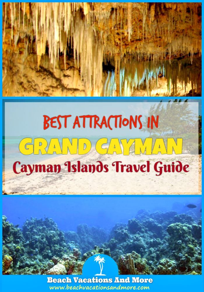Top Grand Cayman attractions: Stingray City,Turtle Farm, Cheeseburger Reef, Hell, Dolphin discovery, Queen Elizabeth II Botanic Park, Kittiwake Shipwreck and more points of interest
