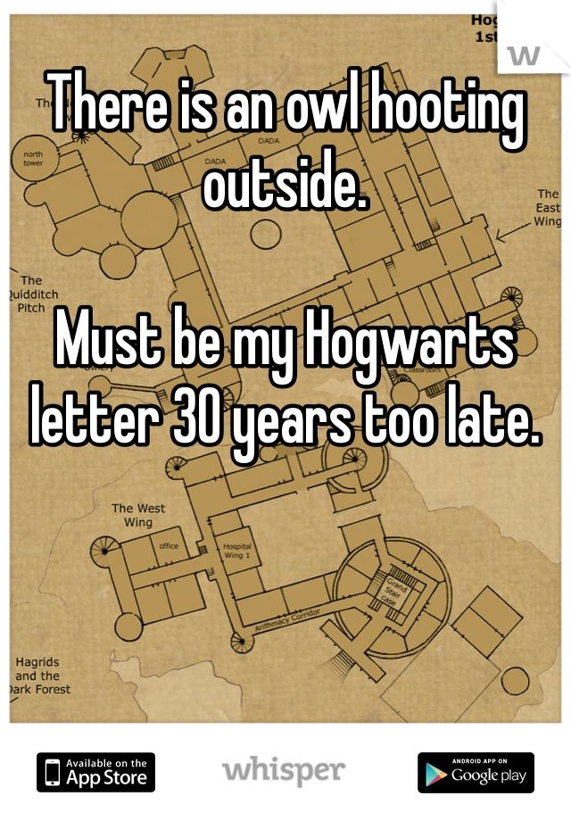There is an owl hooting outside.  Must be my Hogwarts letter 30 years too late.
