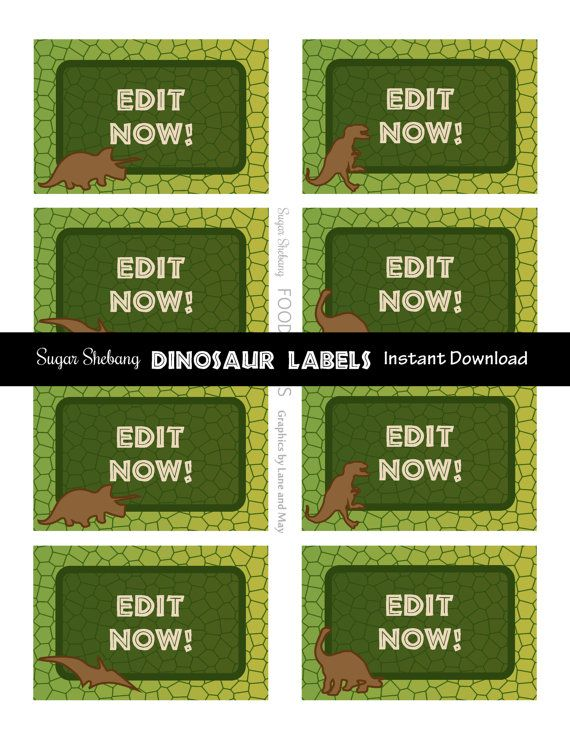 13 best images about Dino on Pinterest Dinosaur party Dinosaur