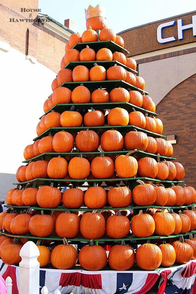 Lots of fun fall photos from the Circleville Pumpkin Show @ HouseOfHawthornes.com
