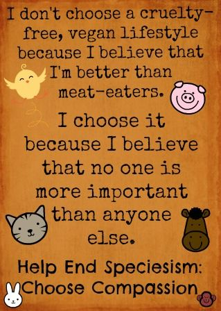 I choose to be vegan because I hate the taste and feel of animal products. I still support scientific research that involves animal subjects, in fact I do stem cell research. I don't support cruelty towards animals, but I don't think I am doing anything for them by being vegan.  Vegan does not mean animal rights activist. This is stupid.