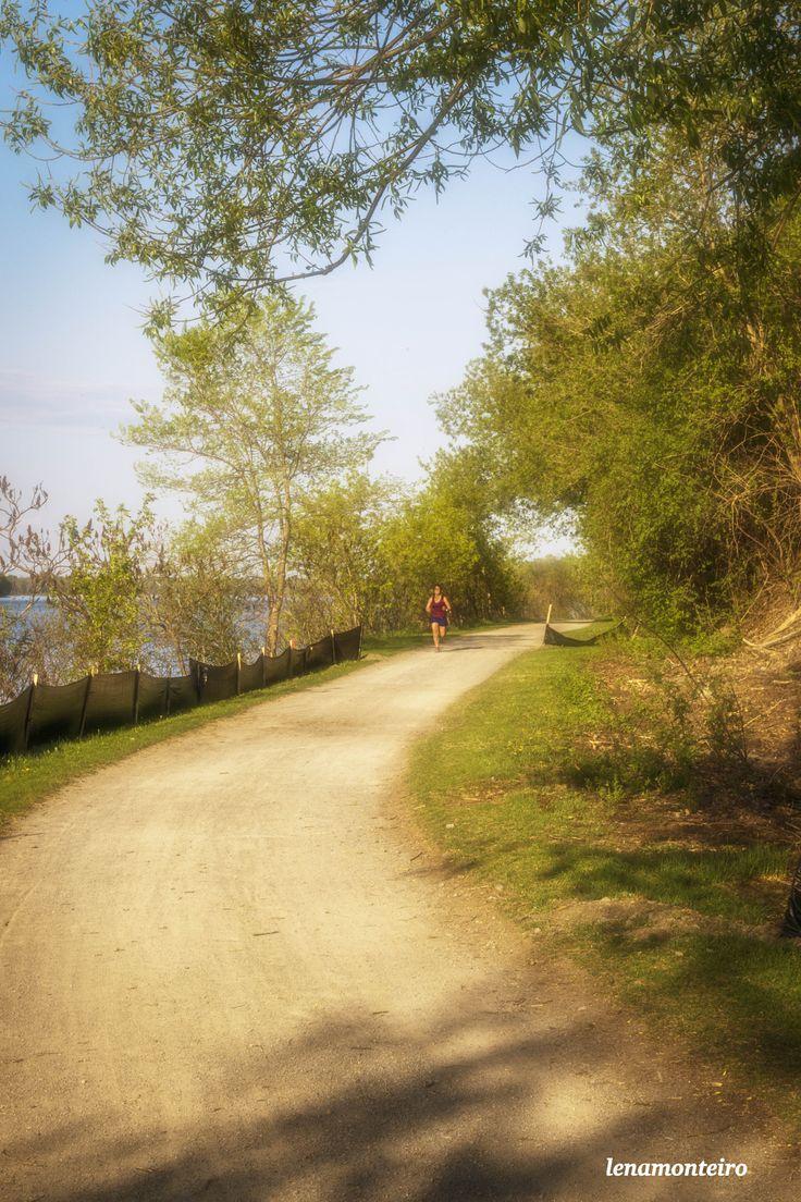 Run... - Ottawa, Ontario, Canada, North America