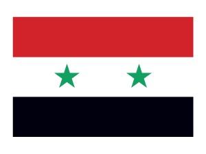 Syria Flag Tattoo #flags #syriaflag #temporarytattoos #t4aw