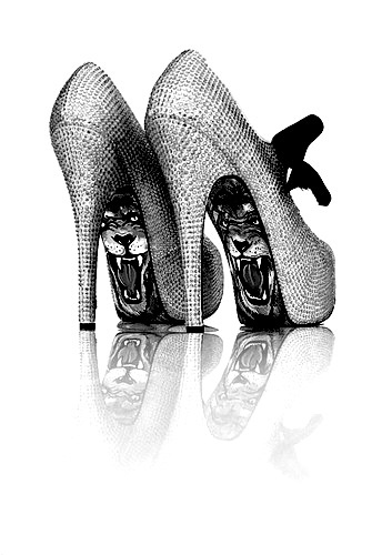 ♥Taylors Reeves, Lion, Pop Art, Fashion, Style, Shoes Fit, Art Stilettos, High Heels, Shoes Shoes