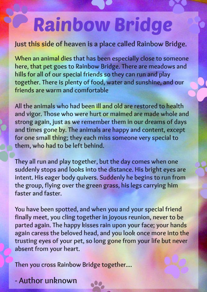 Rainbow Bridge Dog Heaven Poem https://homedecoratingideas.club/galleries/rainbow-bridge-dog-heaven-poem.html