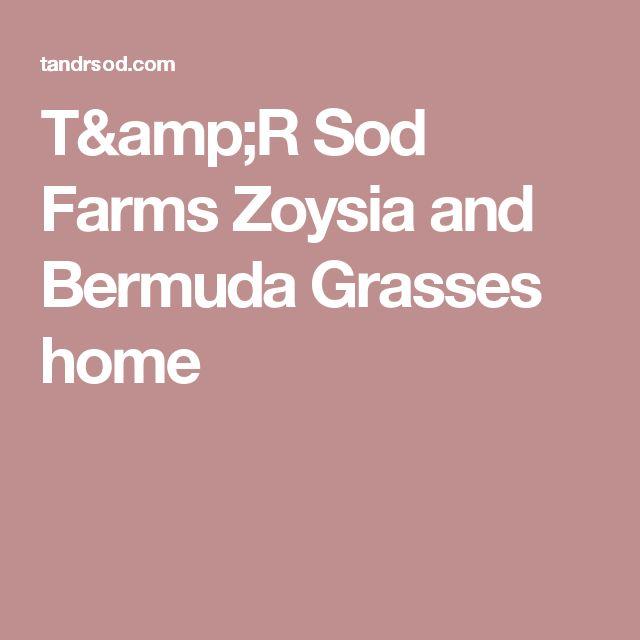 T&R Sod Farms Zoysia and Bermuda Grasses home