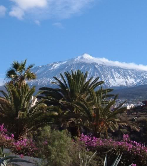 Why Tenerife in the Canary Islands is such a popular holiday destination