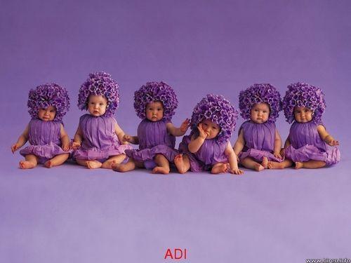 Little purple babies