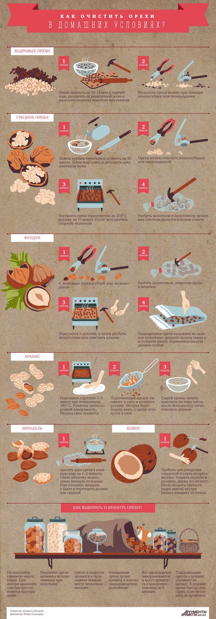 Как очистить орехи в домашних условиях? Инфографика | Инфографика | Аргументы и Факты
