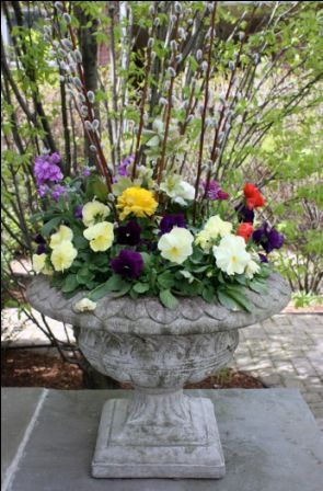 spring planting | Gardening in containers | Pinterest